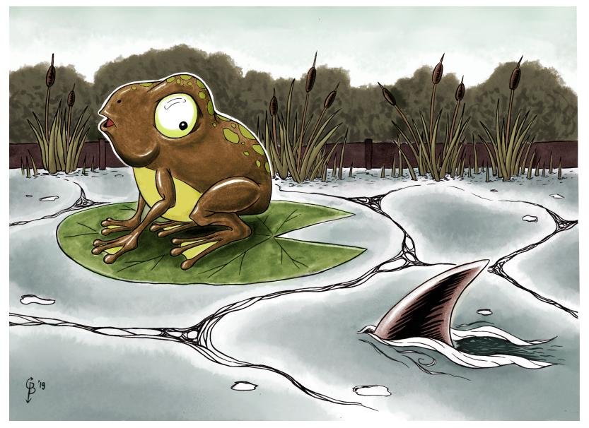 kinderboeken portfolio afbeelding van een kikker die verschrikt kijkt naar een haaievin in zijn vijver